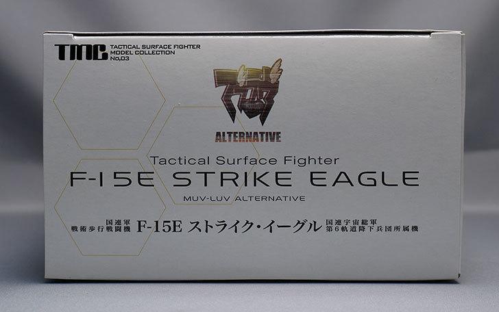 TMC-F-15E-ストライク・イーグル-第6軌道降下兵団が届いた6.jpg