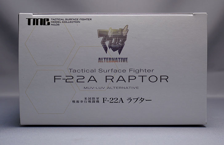 TMC-F-22Aラプターが届いた6.jpg