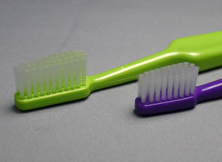 TePe-テペ-歯ブラシを買った来た4.jpg