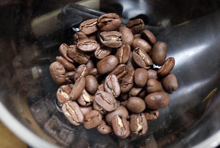 ToNeGaWa-coffeeでニカラグア産のマラゴジペ種の豆を買った2.jpg