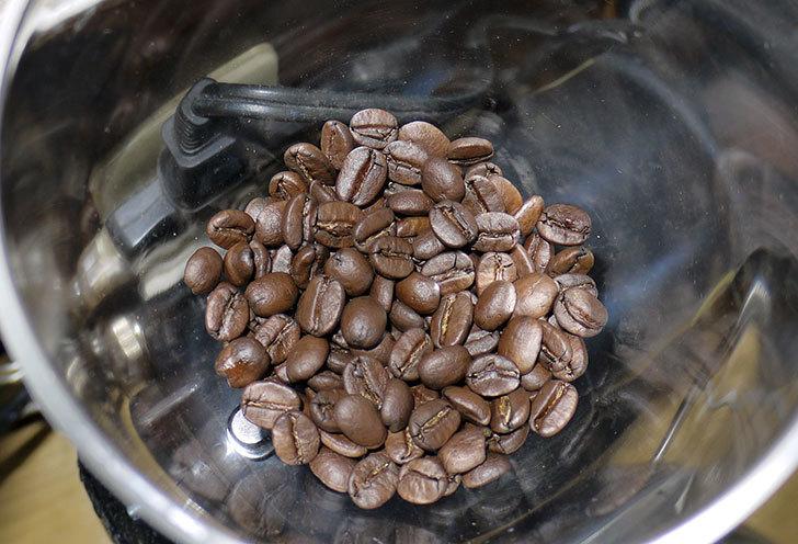 ToNeGaWa-coffeeでブラジル産のダテラSB-Cityの新豆を買った1.jpg