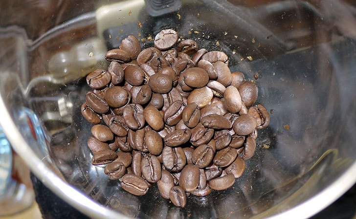 ToNeGaWa-coffeeでブラジル産のダテラSB-Cityを買った3.jpg