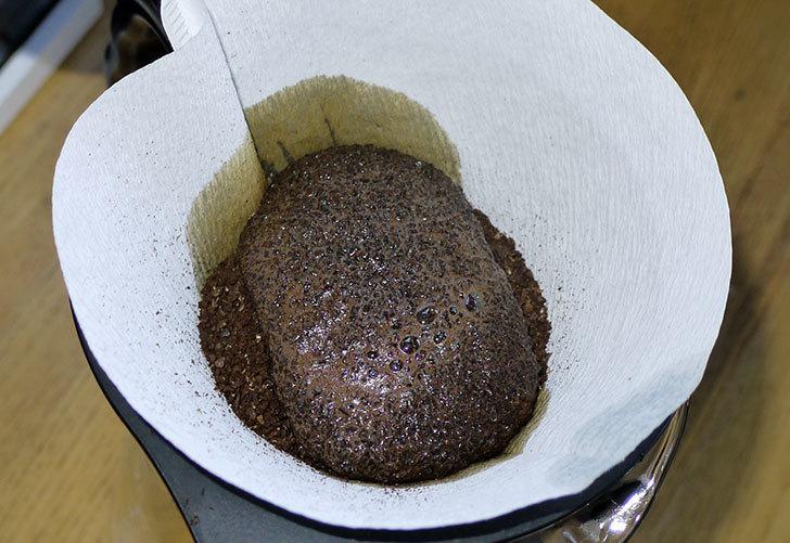 ToNeGaWa-coffeeでペルー産のWガルシアCa-カトゥーラ種の豆をまた買った6.jpg